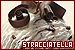 Ice Cream: Stracciatella