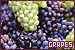 Fruit: Grapes